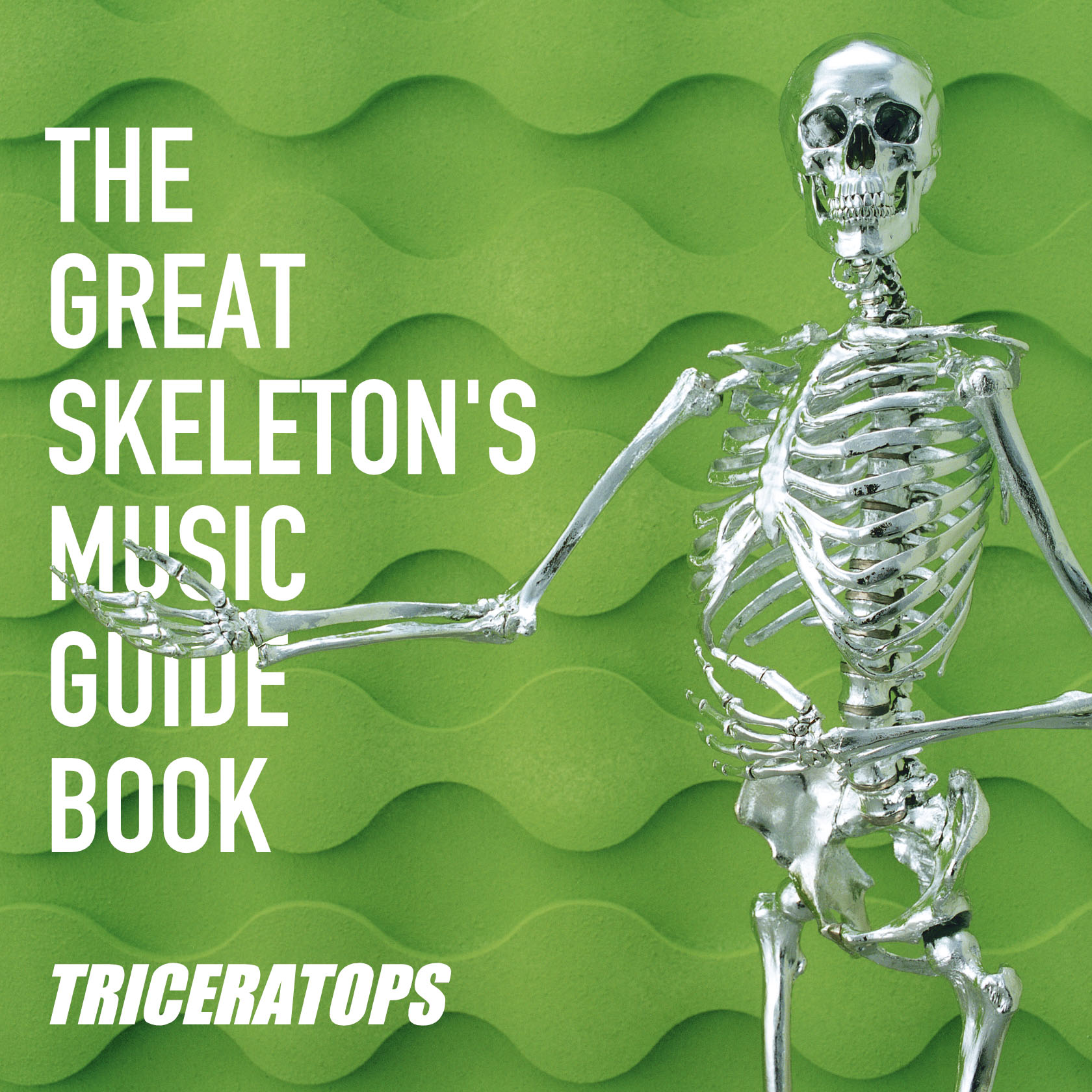 THE GREAT SKELTON'S MUSIC GUIDE BOOK