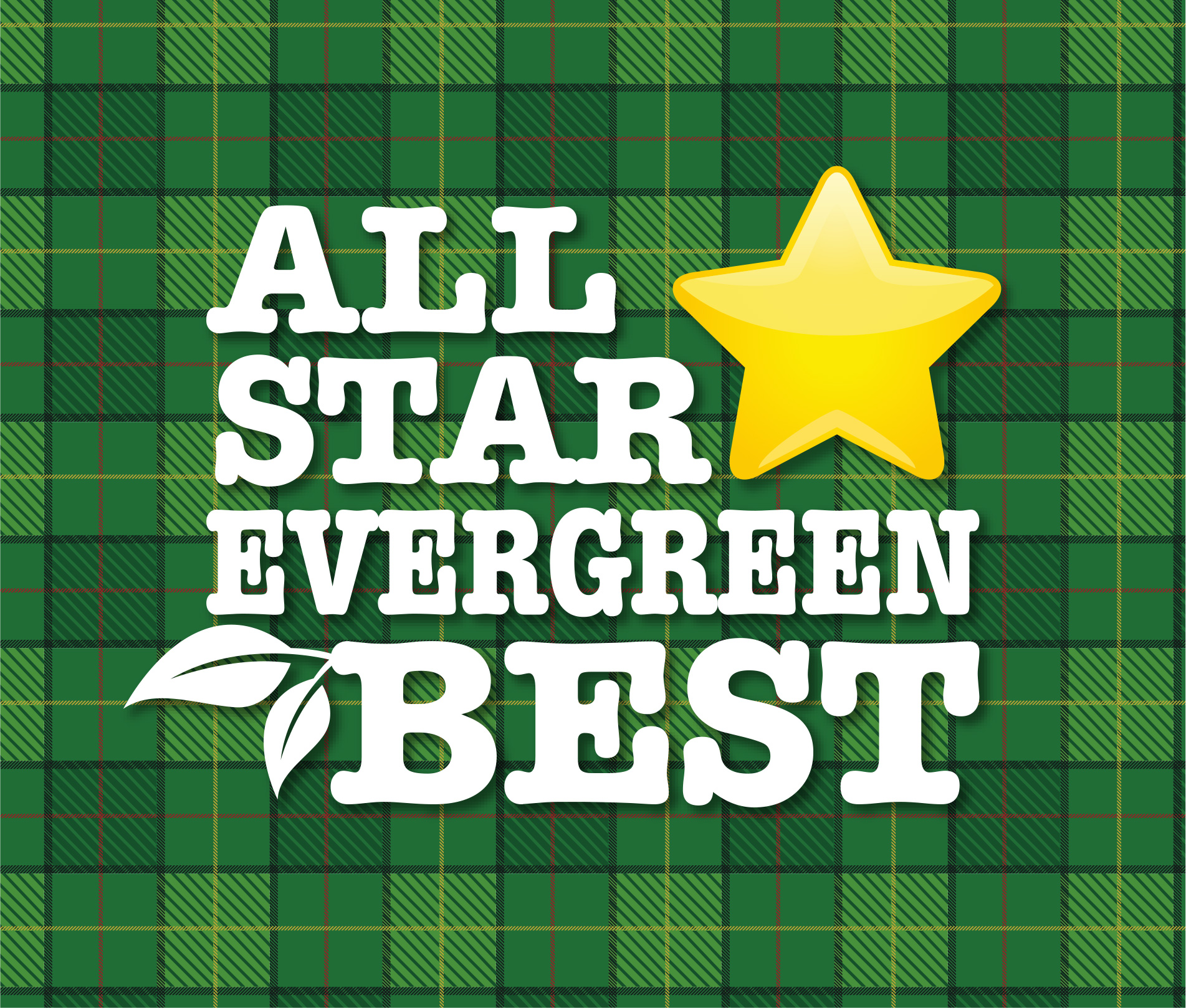 allstar evergreenジャケ写